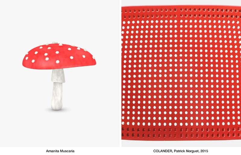 Design outfit sedie colorate e design italiano da maison for Sedie design italiano
