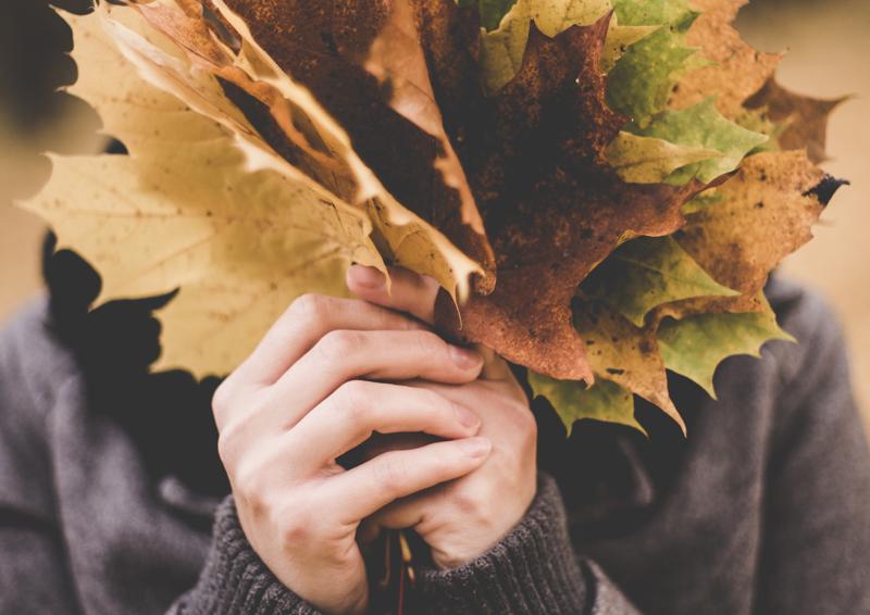 pulizie di autunno: addio allo sporco, benvenuto freddo!
