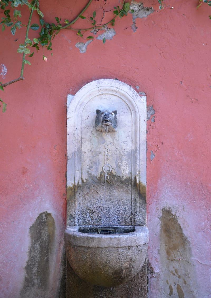 posti belli a Roma: visitare il Roseto Comunale