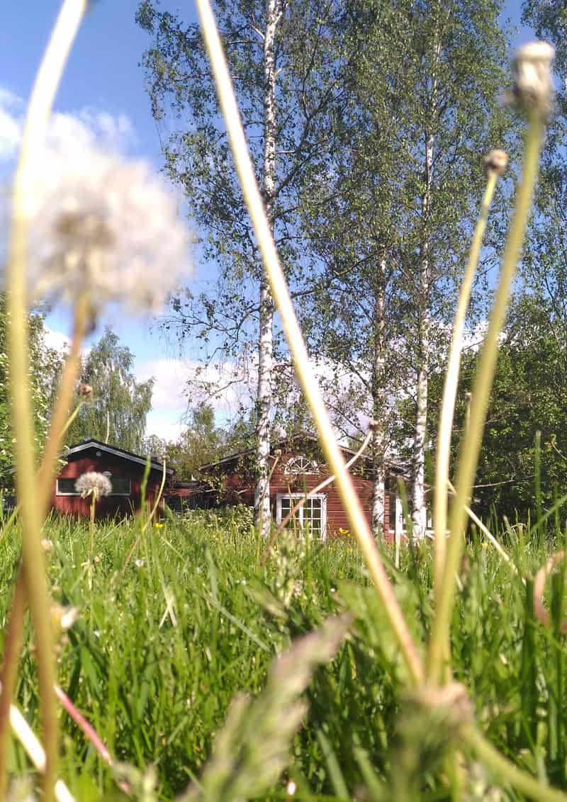 la fabbrica di iittala nel verde della campagna finlandese | foto scattata a maggio 2016 durante il blogger tour WEBLOGfinlandia